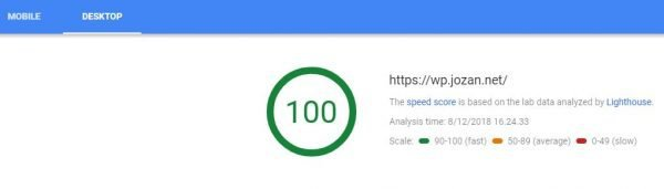 Hunting a 100/100 Google PageSpeed Insights score