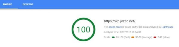 Hunting a 100/100 Google PageSpeed Insights score | Jozan